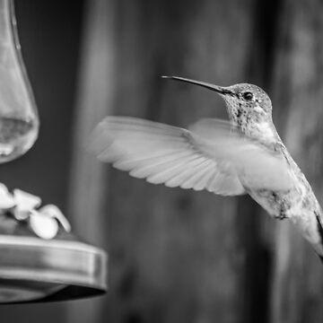 Humming in Monotone by BigRedCurlyGuy