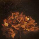 hydrangea-heartlessness by xairoise