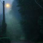 Foggy Morning by James Cole