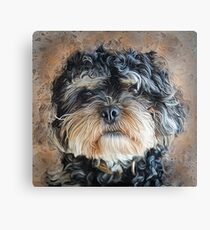 Ted The Cockapoo Canvas Print