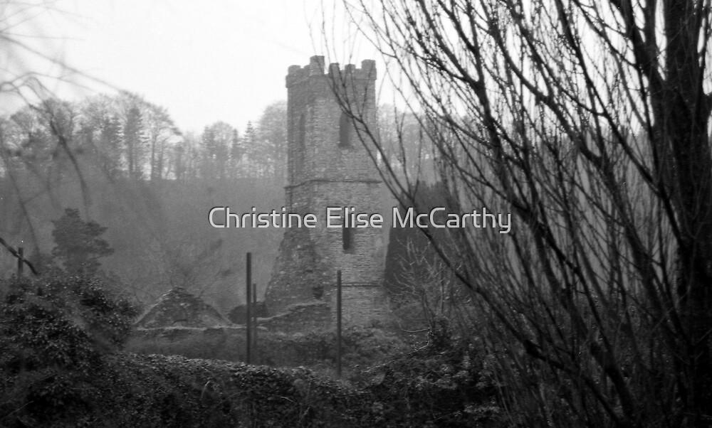 Ireland by Christine Elise McCarthy