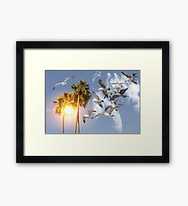 Seagull Flying Palm Trees Framed Print
