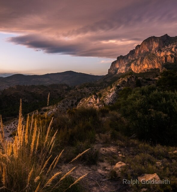 Grass on a mountain side at sunset by Ralph Goldsmith