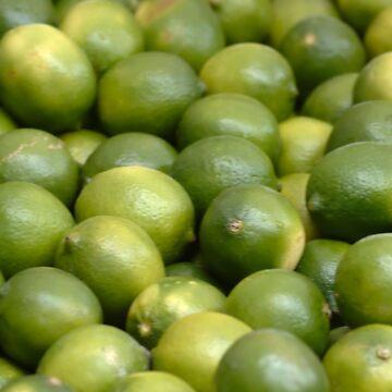 Limes by ianturton