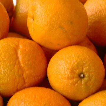 Oranges by ianturton