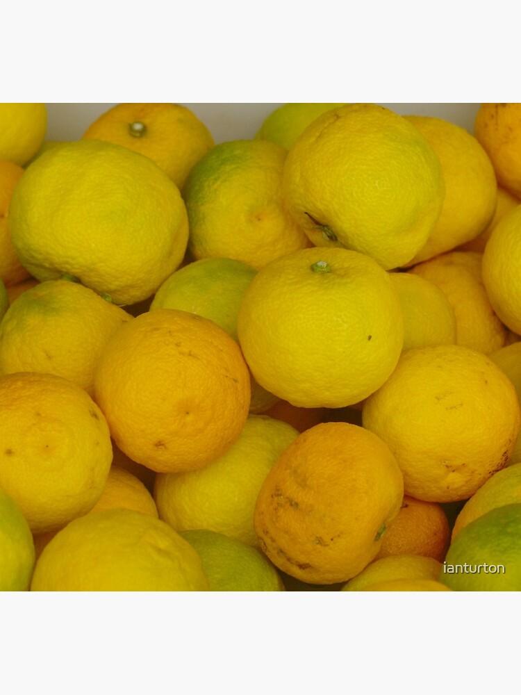 Zitronen von ianturton