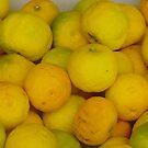 Lemons by ianturton