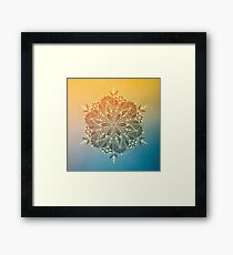 String of Pearls Mandala Framed Print