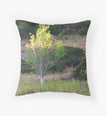 Mosedale Birch Throw Pillow
