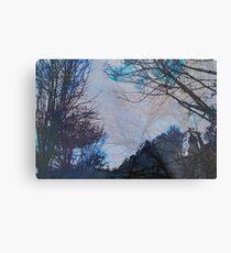 Stacked Trees  Metal Print