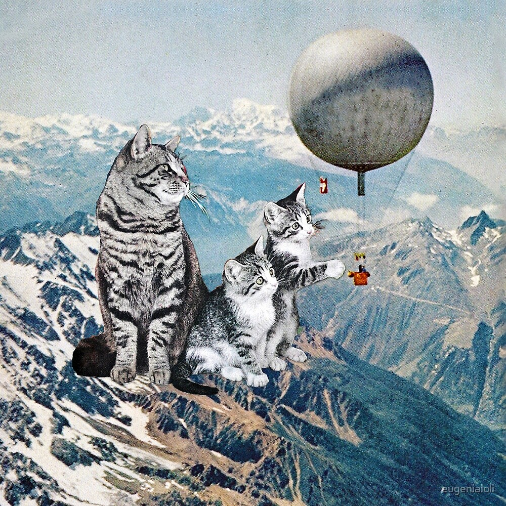 Learning from Experience by eugenialoli