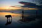 Sand, Sea & Silhouettes by David Lewins