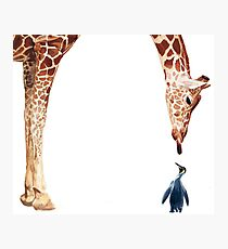 """Licker with Penguin"" Giraffe Watercolor Photographic Print"