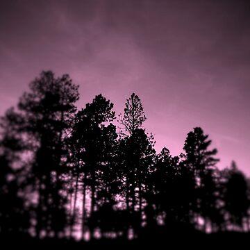 Purple Haze by Tiltedgiraffes