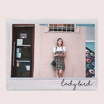 lady bird polaroid II by lunerys