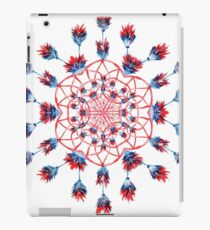 Red Kaleidoscope Merchandise iPad Case/Skin