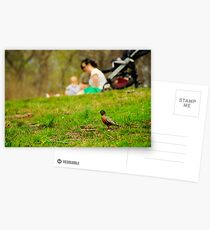 Prospect park Postcards