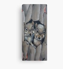 Two Little Squirrels  Canvas Print