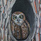 Owl by Kim Donald