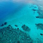 Coral Reef and Turquoise Water  by The-Drone-Man
