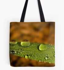 Water droplet on a leaf Tote Bag