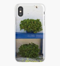 Decorated courtyard iPhone Case