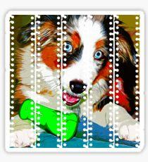 gxp australian shepherd aussie dog puppy vector art Sticker