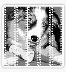 gxp australian shepherd aussie dog puppy vector art black white Sticker