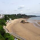 North Beach at Tenby by trish725