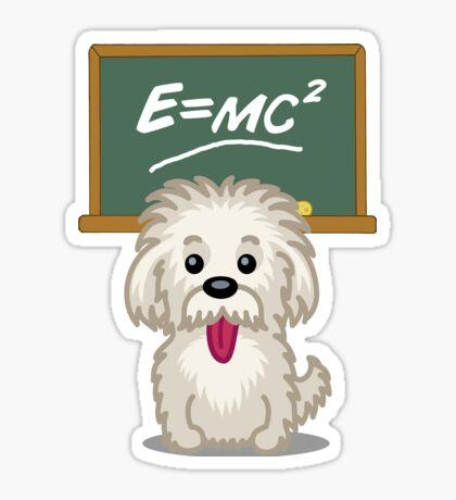 Shihtzu Shitzu Einstein dog tshirt - Dog Gifts for Shihtzu and Maltese Dog Lovers Sticker