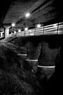 Leaving on the last train... by Paul Louis Villani