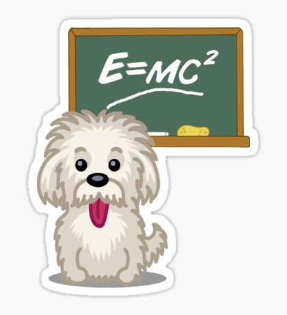 Maths Equation Einstein Shitsiu dog tshirt - Dog Gifts for Shihtzu and Maltese Dog Lovers Sticker
