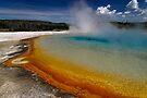 Sunset Lake - Black Sand Basin - Yellowstone by Stephen Beattie