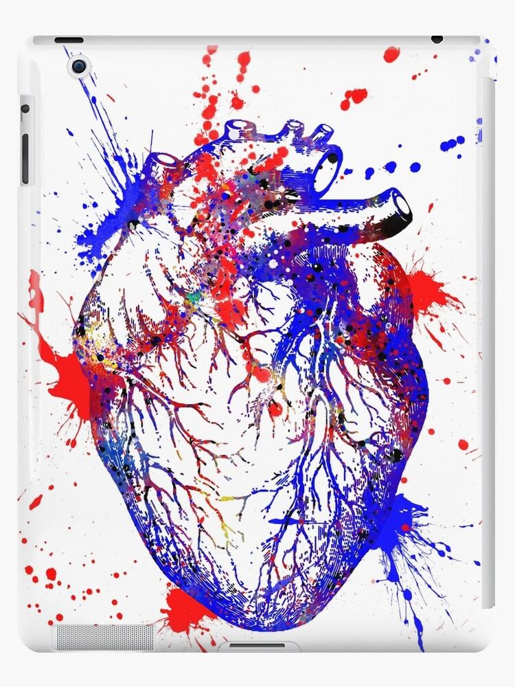 Human Heart Heart Anatomy Medical Art Watercolor Heart Heart