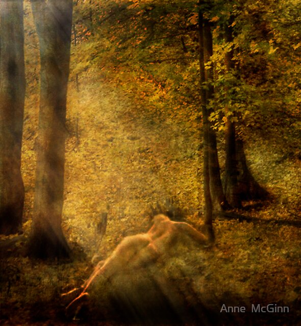 In My Haven by Anne  McGinn