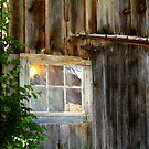 Outside Looking In......... by Larry Llewellyn