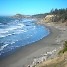 The Beach at Otter Point by Bryan D. Spellman