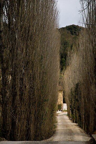 the road by Ilva Beretta