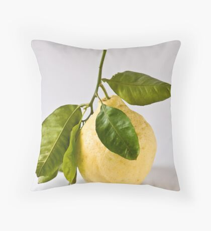 Citron/Cedro Throw Pillow
