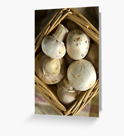 Mushrooms Greeting Card
