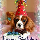 Happy Birthday by Annette Blattman