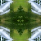 Nature Kaleidoscope 34 by Rachael Martin