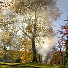 Garden fire and beautiful Autumn Tree (The Lakes almost 5 years ago now ....) by Mike  Waldron