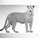 Black Leopard on White Canvas by Serge Averbukh