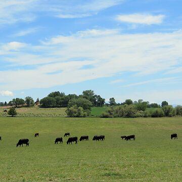 Rich Pastures.   Caldwell, Idaho by trueblvr