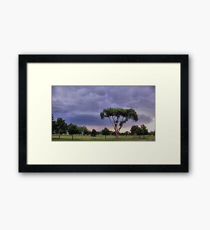 A Storms A Comin Framed Print