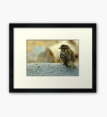 Some Days Are Like This When You're Gone Framed Print