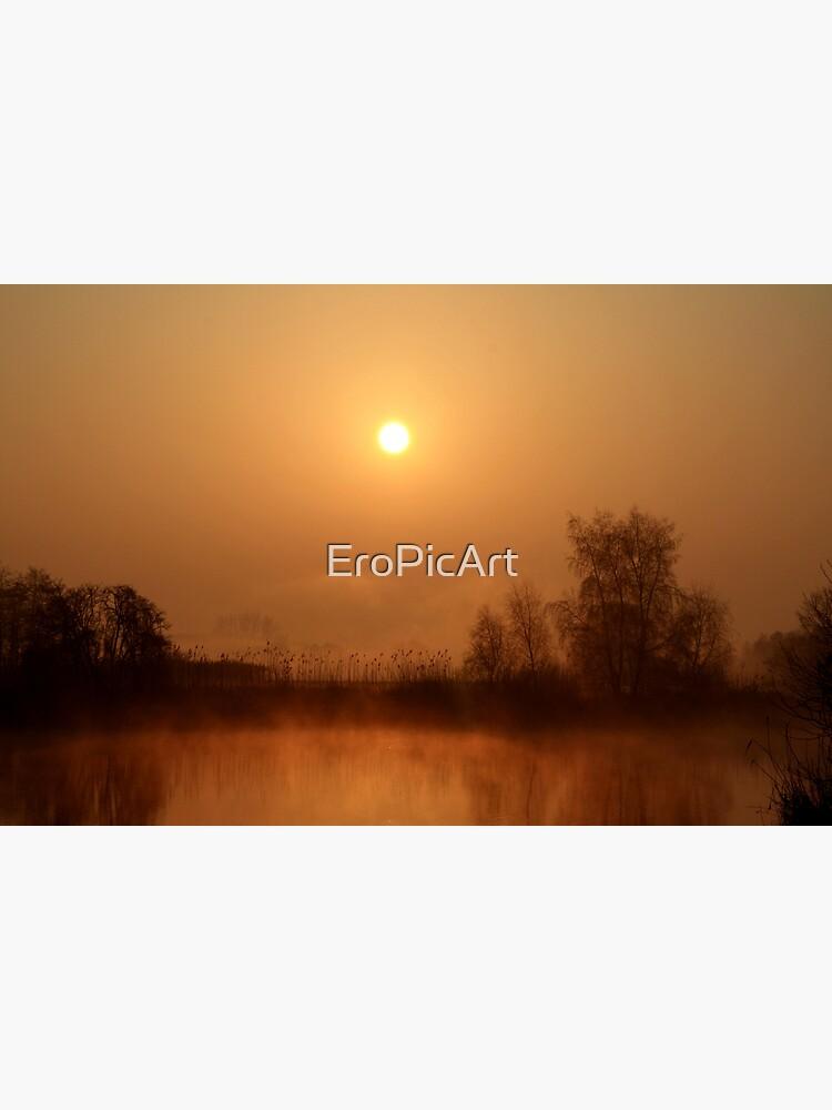 Heron lake  by EroPicArt