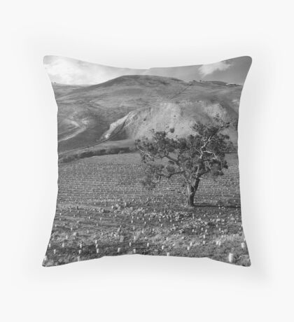 Werribee George with the Elves Throw Pillow