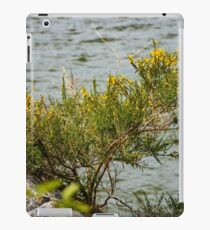 Caragana Perch iPad Case/Skin
